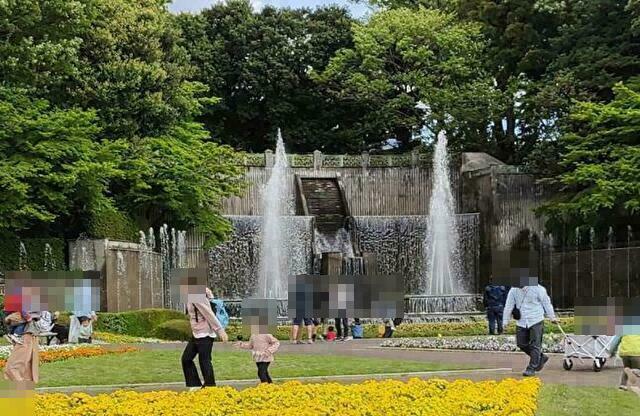 川口市立グリーンセンターに行ってきました!営業時間や入園料・駐車場や滝と大噴水の運転時間も紹介