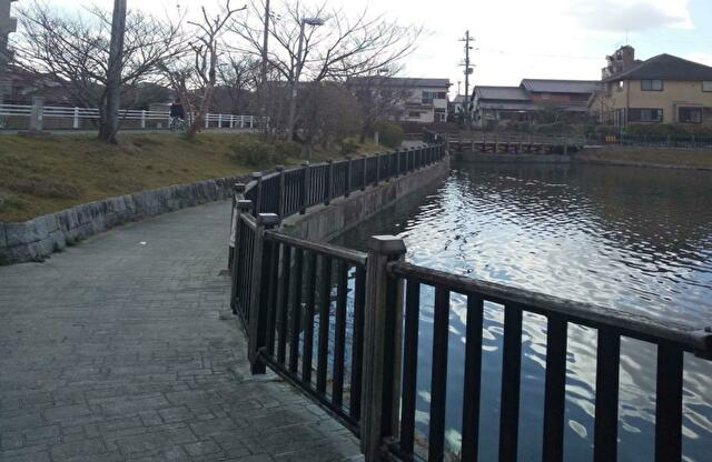 池の周りが遊歩道の小寺池公園に行ってきました!場所やアクセス方法も