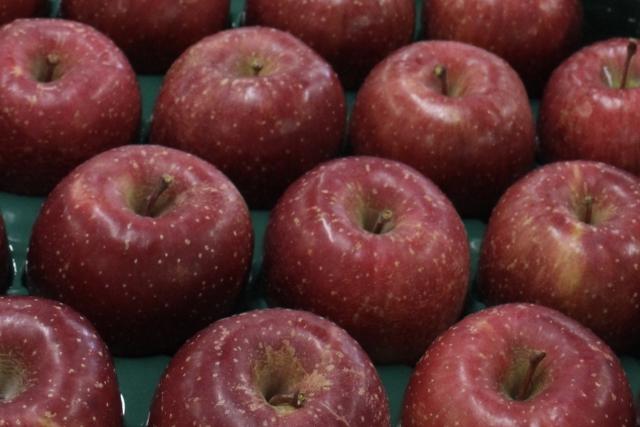 りんご,黒い斑点